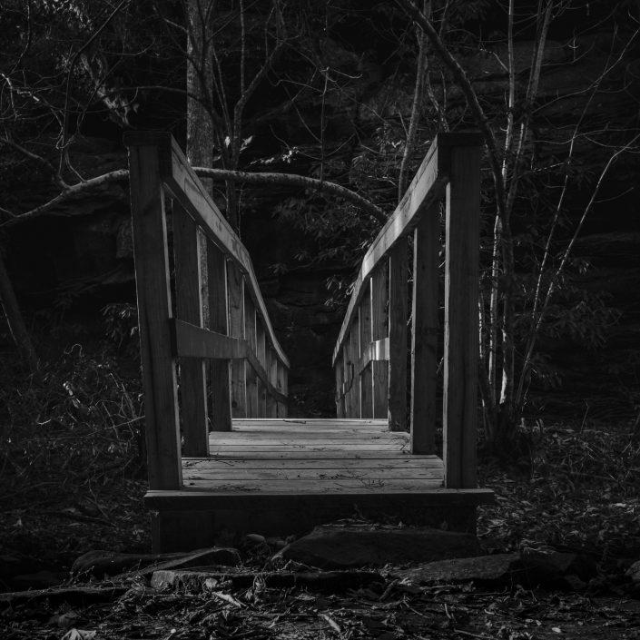 Fujifilm Black and White Photography